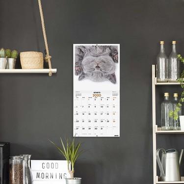 Frases motivacionales, artísticos o con dulces gatitos, así son los veinte calendarios del 2020 más vendidos en Amazon