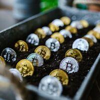 Bitcoin baja de 30,000 dólares por primera vez en 2021 y su momento decisivo ha llegado: o sigue la caída o revierte la tendencia