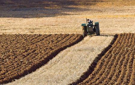 Puede que las granjas en el Reino Unido se queden sin motivos para labrar