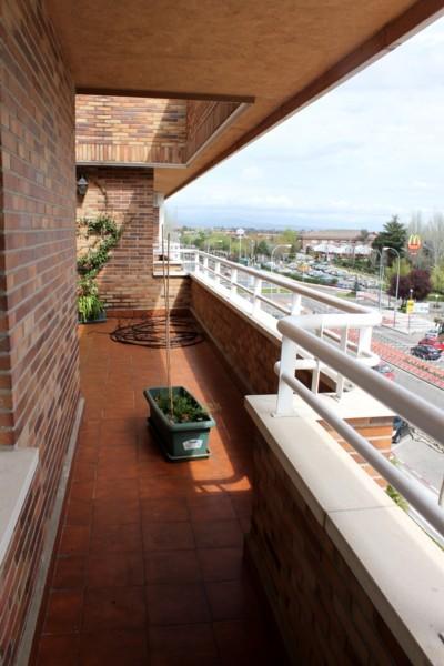 Jardin Habitación Verde antes parte estrecha