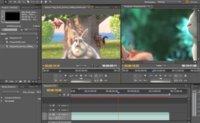 Adobe aumenta un 45% la ventas de Adobe Premiere Pro, ¿gracias a las malas criticas de Final Cut Pro X?