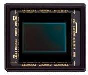 sensor-cx-nikon-1.jpg
