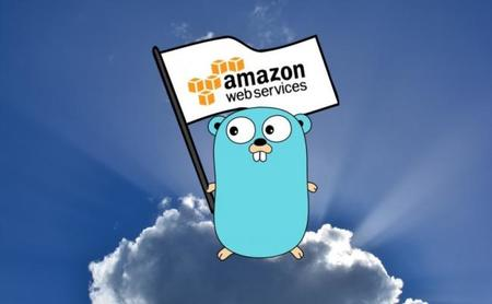 Go también interesa a Amazon AWS: anuncia que trabaja en su SDK oficial