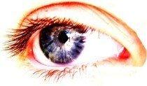 Las células de la retina