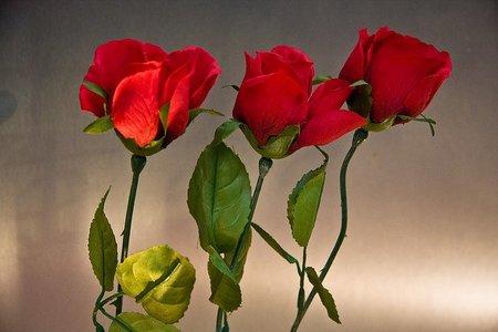 Rosas fáciles para regalar por Sant Jordi