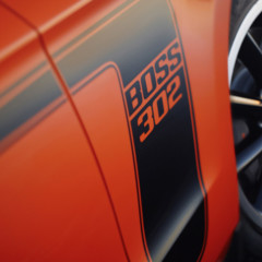 Foto 13 de 38 de la galería 2012-ford-mustang-boss-302 en Motorpasión