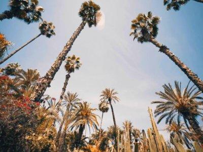 Videos inspiradores: las maravillas de Marrakech