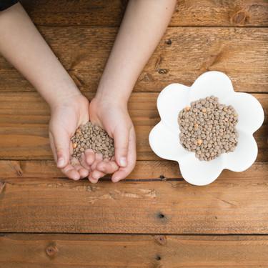 Las legumbres en la alimentación infantil: las lentejas