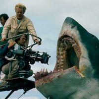 Steven Spielberg quería hacer 'Tiburón 2' pero los productores no aceptaron su idea: soldados contra tiburones