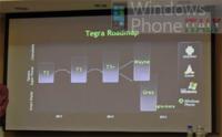 El futuro de Nvidia Tegra está relacionado con Windows Phone