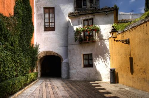 Entre paredes blancas y palacios, la Judería de Sevilla