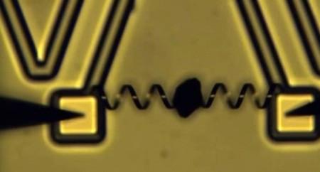 Científicos crean micro-músculos con 1.000 veces la fuerza de los músculos humanos