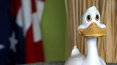 El síndrome del pato cojo en la empresa