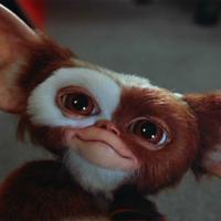 """Chris Columbus ya ha terminado el guión de 'Gremlins 3': """"Va a morir mucha gente"""""""