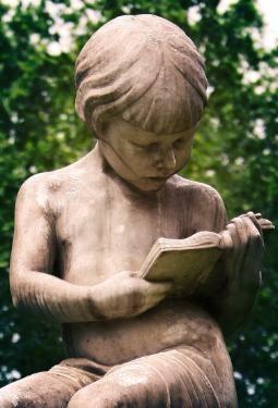 ¿Leer libros o seguir el instinto?