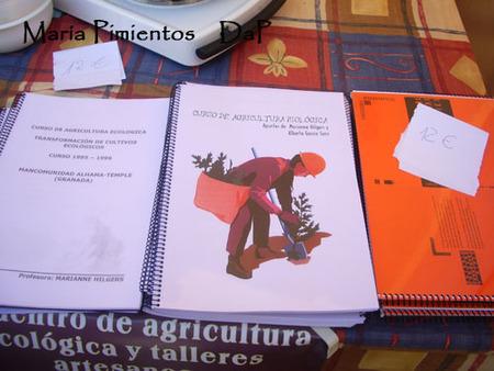 Los libros de Marianne