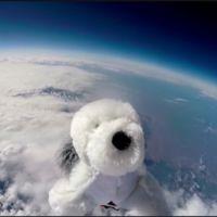 Perdí mi perro Sam, visto por última vez en la estratosfera