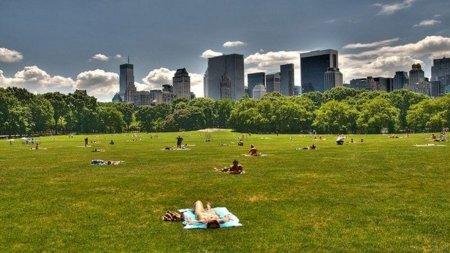 El WiFi gratuito invade las zonas verdes de Nueva York
