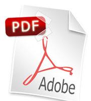 ¿Problemas visualizando archivos PDF en Safari 3?