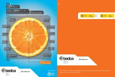 Base de Datos Española de Composición de Alimentos