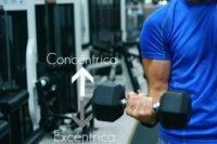 Fase concéntrica y excéntrica en musculación: ¿qué es más eficaz para ganar músculo?