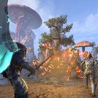 The Elder Scrolls Online: Morrowind muestra sus zonas más importantes en un gameplay de 20 minutos
