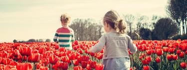 Los niños holandeses son los más felices del mundo año tras año. Así lo han conseguido