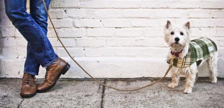Chaquetas y accesorios artesanales para perros desde Nueva York