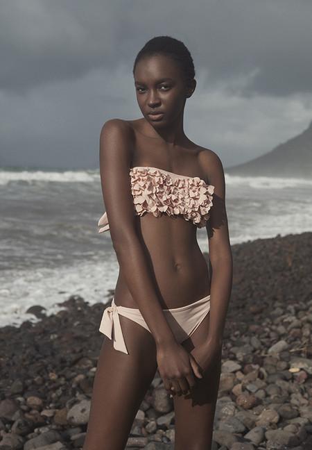 Rosa Colección De Y Flores La Breeze' 'ocean Pastel El Inundan Las FJK13Tlc