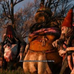 Foto 74 de 79 de la galería the-witcher-3-wild-hunt-ps4 en Xataka México