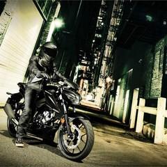 Foto 13 de 54 de la galería suzuki-gsx-s125 en Motorpasion Moto