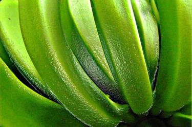 Harina de plátano verde, una rica alternativa para celíacos