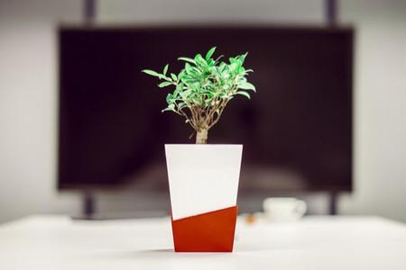 La maceta inteligente que riega las plantas en tu ausencia