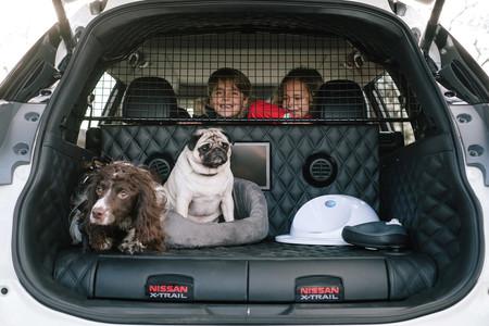 Por fin alguien diseñó un coche pensando en los perros: con pantalla, altavoz, cama, comida y hasta ducha