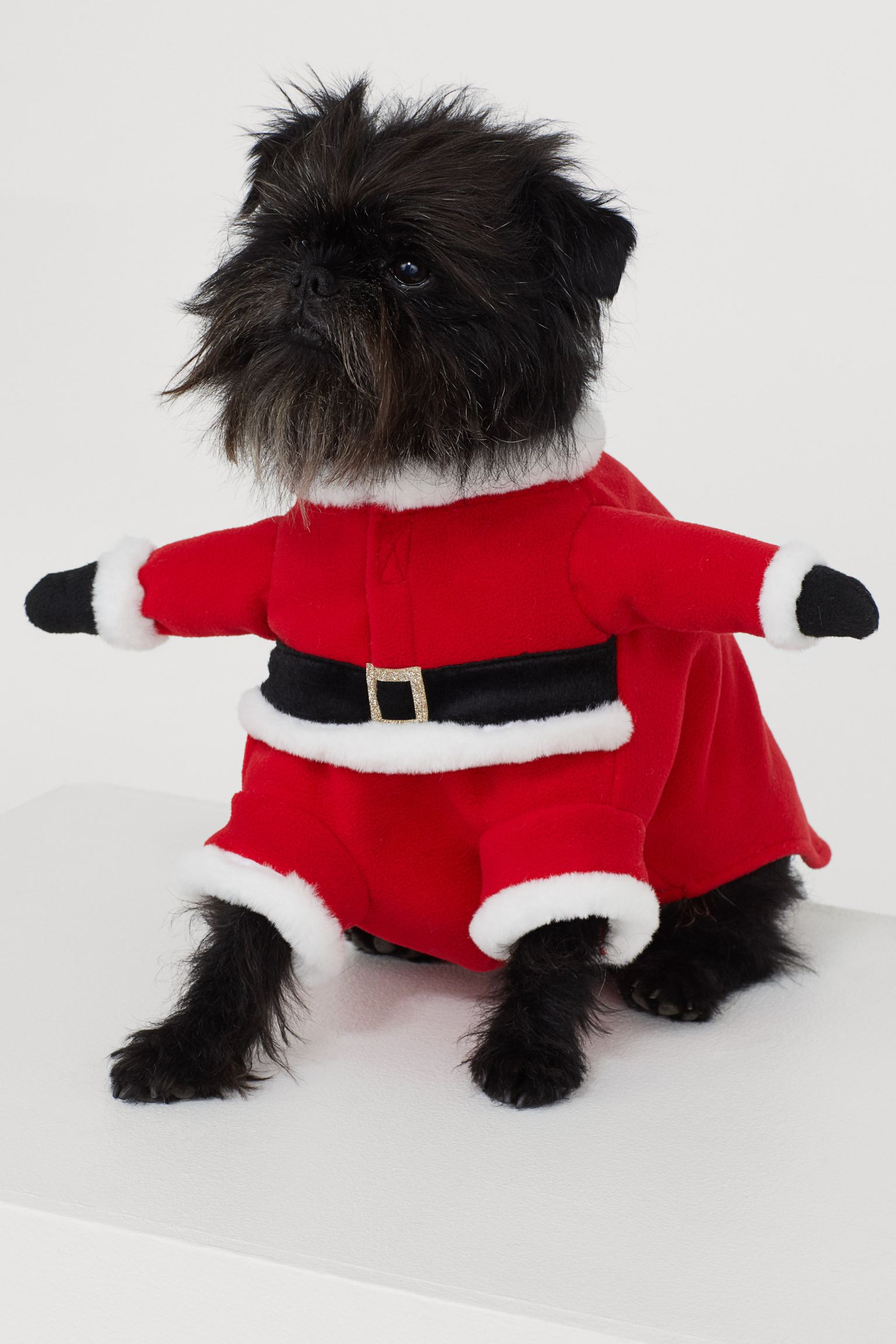 Disfraz de Papá Noel canino