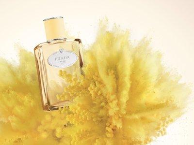 Prada se pone las pilas y nos presenta Mimosa, una nueva fragancia