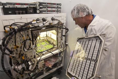 Estacion Espacial Alimentos