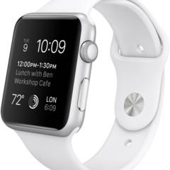 Foto 7 de 9 de la galería apple-watch-sport-1 en Applesfera