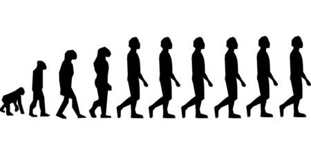 Evolution 296584 960 720