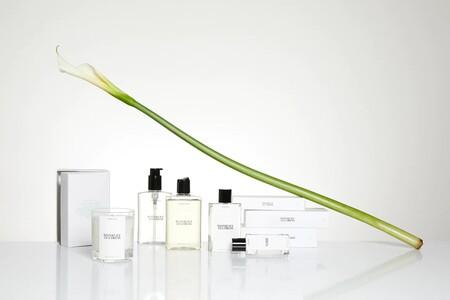 Si eres de las que adora la colección de perfumes Zara Emotions (by Jo Loves), esta nueva fragancia podría interesarte