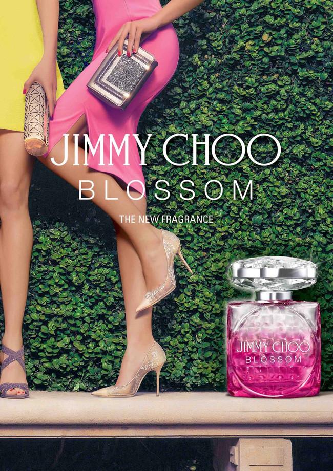 comprar jimmy choo blossom perfume review