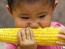 La alimentación humana depende de 45 plantas