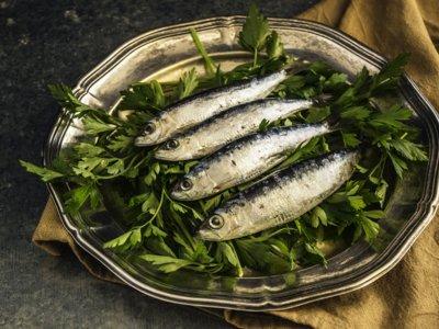 ¿Buscas el mejor pescado? Elige con ayuda de esta completa tabla nutricional