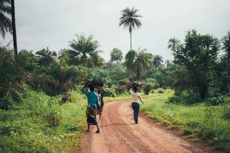 La cuenta atrás para acabar con la malaria ha empezado: así es como podemos erradicarla (si es que hay voluntad de hacerlo)