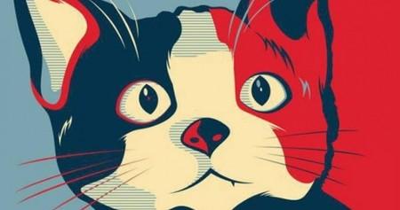 Gracias a su campaña en redes sociales el Candi-gato Morris obtiene cerca del 10% de los votos en Xalapa