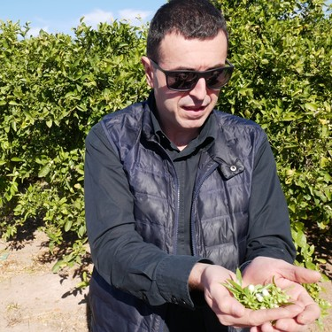 """En el huerto con Ricard Camarena: """"Con la agricultura ecológica ha pasado como con la cocina creativa, hemos abusado"""""""