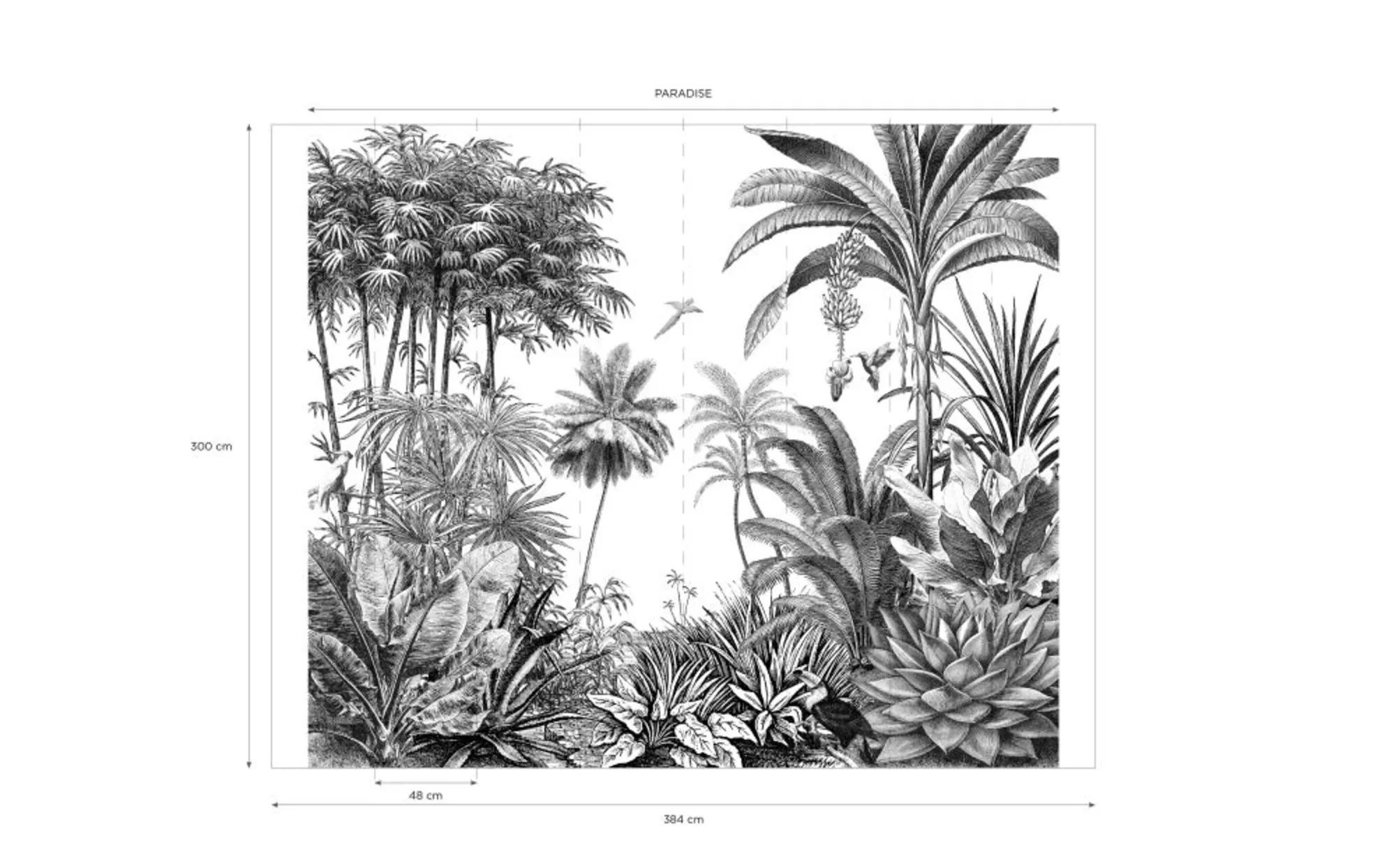 PARADISE.- Papel pintado no tejido con estampado de jungla en blanco y negro 300x350 cms