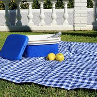 Ideal para camping y piscina: nevera de camping Campos en color azul de 10 litros por 10,90 euros en Amazon