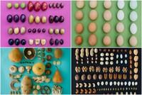 ¿Puede un mismo alimento permutar en infinitos colores?