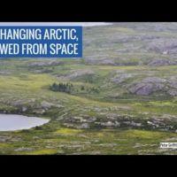 Este vídeo muestra una Alaska inédita: llena de vegetación